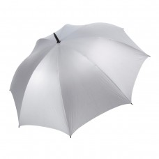Virginia Silver Umbrella
